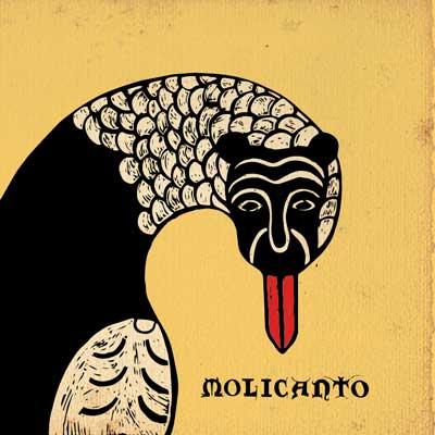molicanto
