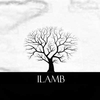 logo-ilamb