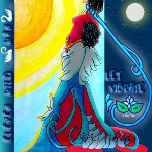 cover album eleven_wild_swans