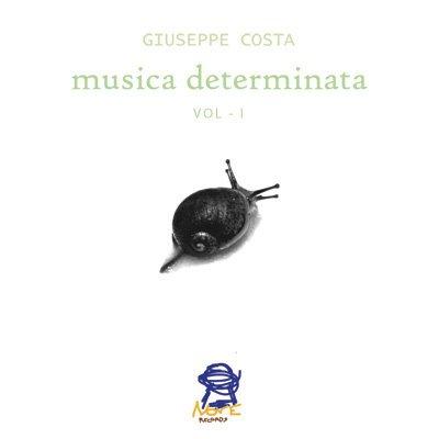 musica determinata